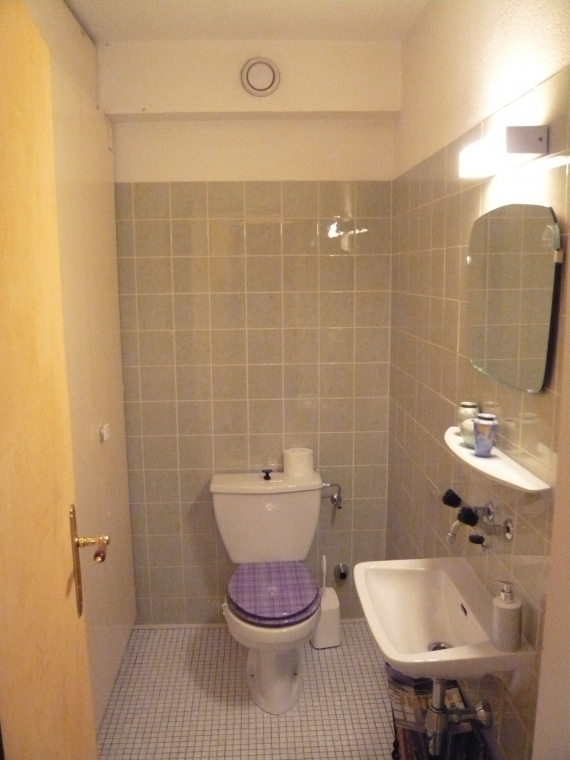 relooking de toilettes visiteurs nuance couleur et habitat travaux de peinture sion valais. Black Bedroom Furniture Sets. Home Design Ideas